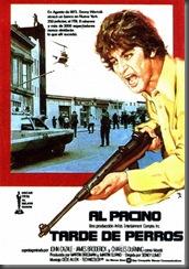 1975 TARDE DE PERROS