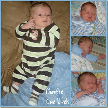 Charlie One Week Collage