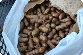 boiled peanuts!