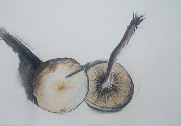 Little Brown Mushrooms <br> Pastel, oil pastel, charcoal on paper <br> 12.5 x 18 in