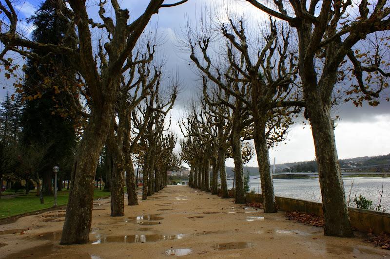 Coimbra, Jardim junto ao Mondego