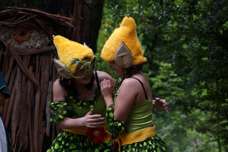 Na floresta Encantada, os duendes