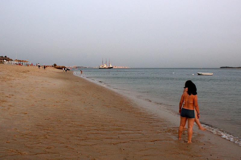 O barco No Sado desde Albarquel