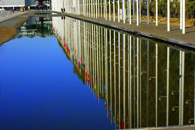 Reflexos no parque das nações