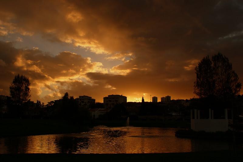 pôr do Sol no jardim da Algodeia, Setúbal