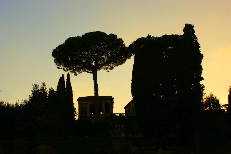 Roma, Foro Romano
