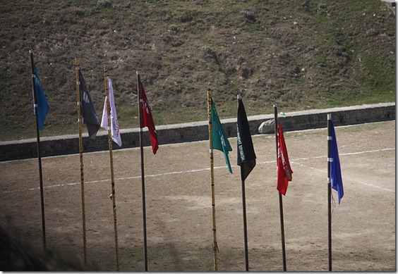 flags of 8 houses participating in the sports week
