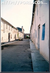berfull 1996