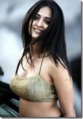 Telugu Actress Anushka Shetty looking sexy in Saree.. (7)