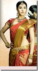 divya parameshwar pics (15)
