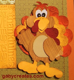 gaby turkey close up