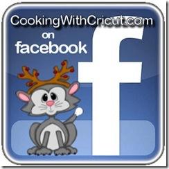 facebook logo-300