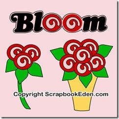 bloom n roses jpg-300
