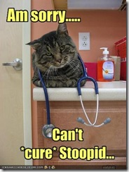 cat-says-your-disease-is-incurable (Small)