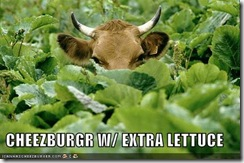 cow-lettuce-burger (Small)