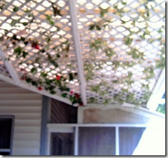 Pergola-17May10-3