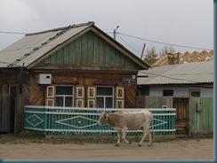 Lake Baikal (72)