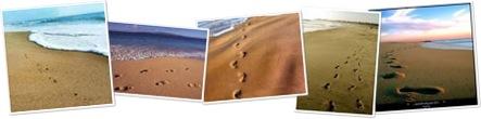 Ver Pisadas en la arena