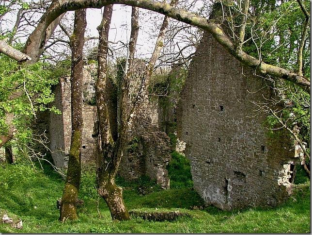 aberthaw castle