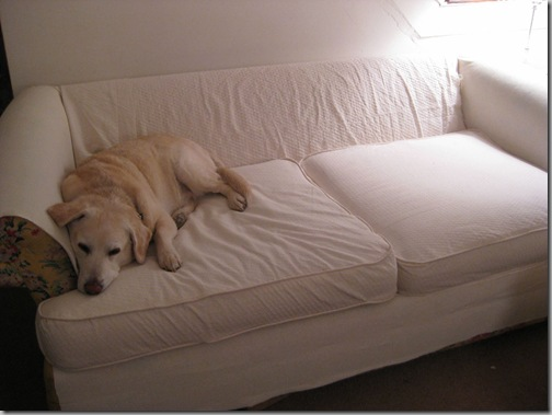 3-27 001