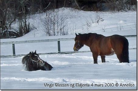 2010-mars-blessen-jenta_05