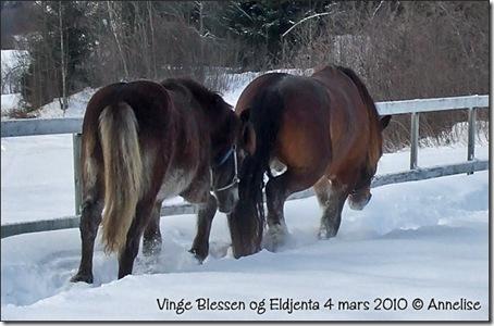 2010-mars-blessen-jenta_04