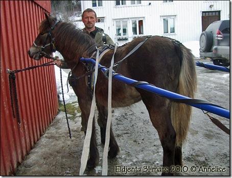 2010-eldjenta-31mars_01