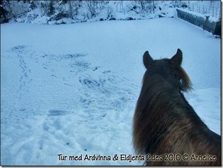 ridetur-2des_08