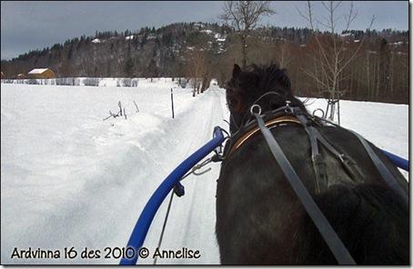 2010-16des-ardvinna_02