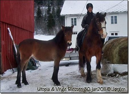 2011-utopia30jan_01