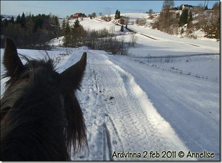 2011-2feb-ardvinna_01