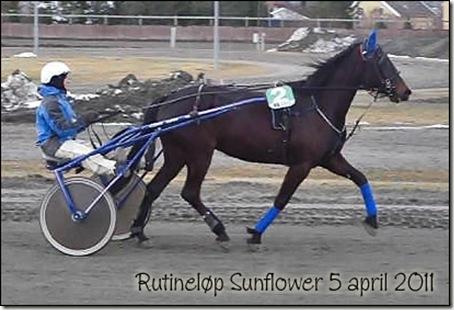2011-rutinelop-5april_01