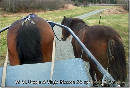 2011-april26-sosken_03