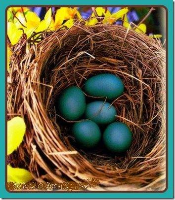 The Nesting Instinct