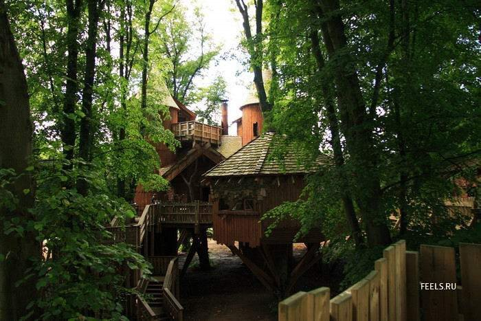 Really Beautiful and Inspiring Tree House