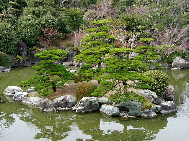 Beauty of a Japanese Garden