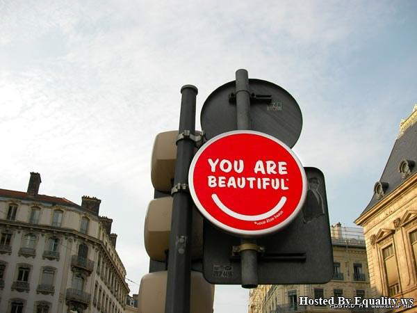 Lovely Traffic Signs