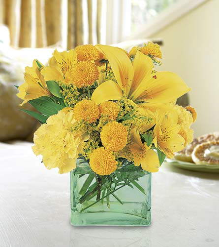 Beautiful Flowers for Home Decor