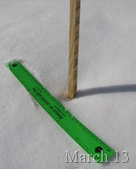 Snowstick March 13