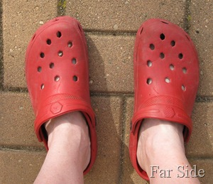Old Red crocs