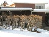 Hybrid Hedge