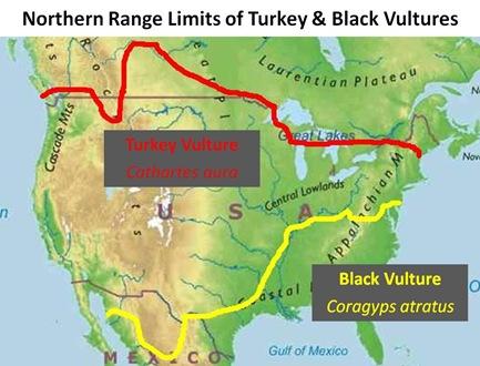Vulture Range Limit Map