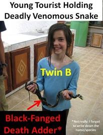 TwinB Snake
