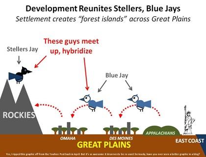 Jays Meetup