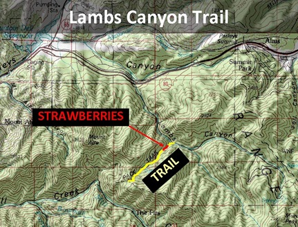 Lambs Trail Map