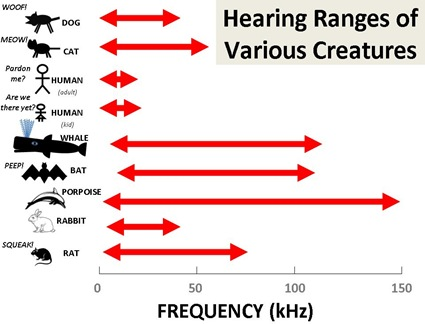 Hearing Ranges