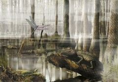 carboniferous-swamp-71129148-ga