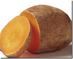 batatas_con_mayor_cantidad_de_carbohidratos_para_la_produccion_de_bioetanol_biocombustibles