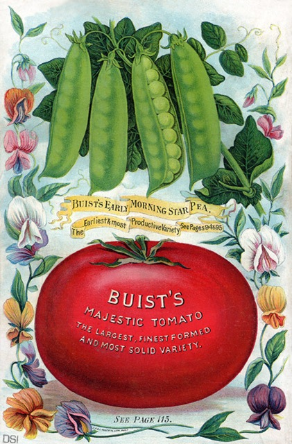 buist&#39;s-peas-&amp;-tomato