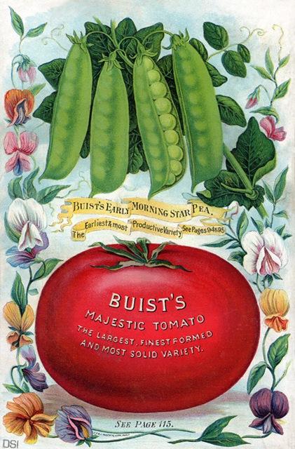 buist's-peas-&-tomato